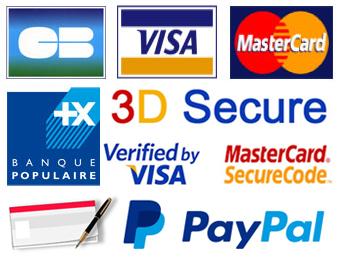 Carte bleue, carte bancaire, Mastercard, chèque, mandat cash, 3D secure, Paypal